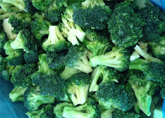 IQF Individually Quick Frozen Broccoli Custom Size / Packaging Acceptable