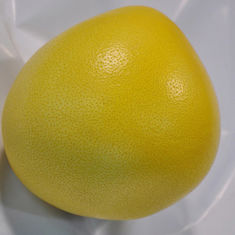 China 2020 New Crop Golden Honey Grapefruit Good For Lungs / Throat / Blood Circulation factory