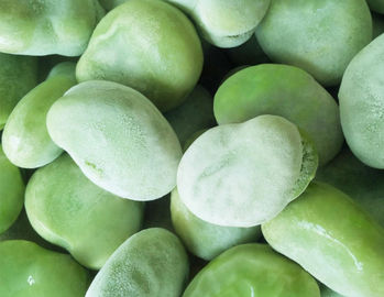 China High Grade IQF Frozen Vegetables , Whole / Split Flash Frozen Peeled Broad Beans factory